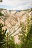 La gorge grande de Yellowstone Image stock