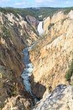 La gorge grande du Yellowstone Photo stock