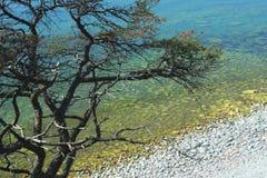 La Gotland Fotografia Stock Libera da Diritti