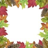 La gouache dell'acquerello che disegna i rami variopinti delle foglie ha messo del autum Royalty Illustrazione gratis