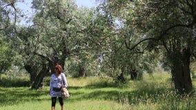 La Grèce en mai 2014 : Île de Thasos banque de vidéos