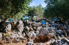 La Grèce - le Kefalonia - ruches images stock