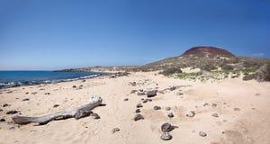 La Graciosa - playa salvaje de la arena en Playa Francesa Imagenes de archivo