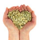 La graine du potiron dans la paume ressemble au coeur Photo stock