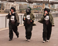 La gran corrida del gorila Fotos de archivo libres de regalías