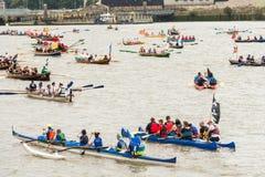 La gran raza del río Imagen de archivo