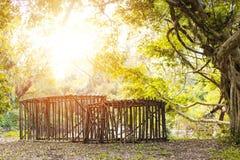 La grande cage en bois sont au sol dans la forêt photos stock