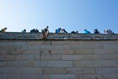 La Grande Muraille Photos stock