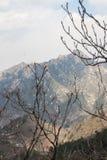 La Grande Muraille de Mutianyu dans Pékin, Chine photographie stock libre de droits