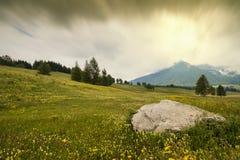 La grande roccia nei prati Fotografia Stock Libera da Diritti