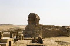 La grande Sfinge a Giza Immagini Stock Libere da Diritti