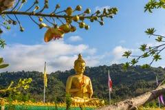la grande statue d'or de Bouddha parmi beaucoup de petites statues de Bouddha Image stock
