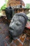 La grande tête de Bouddha Image libre de droits
