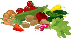 La grande toujours vie avec la composition en récolte d'automne avec différents légumes sur le fond blanc illustration libre de droits