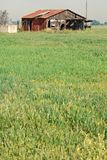 La grange abandonnée se repose dans le domaine Photographie stock
