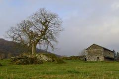 La grange rurale de mère patrie. Photo libre de droits