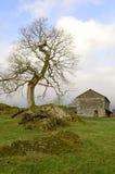La grange rurale de mère patrie. Image libre de droits