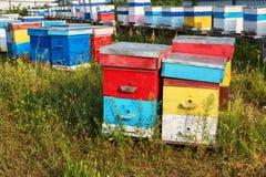 La granja de las colmenas El colmenar, fila de la abeja encorcha en un campo Fotografía de archivo libre de regalías