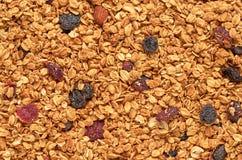 La granola avec des écrous et les fruits secs donnent au fond une consistance rugueuse photos stock