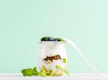 La granola d'avoine de yaourt avec la confiture, les myrtilles et le vert part dans le pot en verre sur le contexte en bon état Images stock