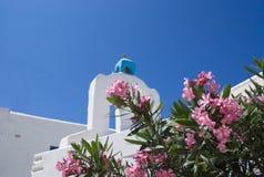 La Grecia l'isola di anti Paros Fiori e una vecchia chiesa immagine stock