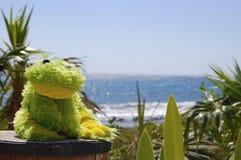 La grenouille et la mer Photo libre de droits