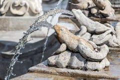 La grenouille injecte l'eau - fontaine de détail image libre de droits