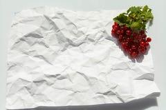La groseille rouge sur le fond blanc, nourriture saine, fruit frais, a chiffonné le fond de papier Photo libre de droits
