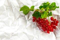 La groseille rouge sur le fond blanc, nourriture saine, fruit frais, a chiffonné le fond de papier Image libre de droits