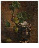 La grosella espinosa Imagen de archivo libre de regalías