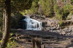 La grosella espinosa cae en la orilla del norte de Minnesota Imagenes de archivo