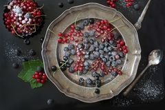 La grosella roja y negra fresca, las frambuesas negras adorna el polvo del azúcar, ramifica pasa roja en disco en negro Visión su Fotografía de archivo