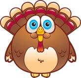 La grosse Turquie Photographie stock