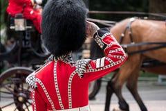 La guardia saluta come passaggi del trasporto e del cavallo nella parte anteriore a radunare il colore, il centro commerciale, Lo immagine stock