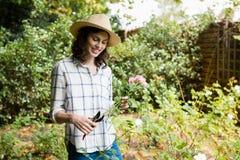 La guarnizione della donna fiorisce con i tagli della potatura in giardino Immagini Stock Libere da Diritti
