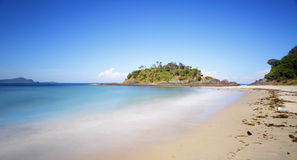 La guarnizione della spiaggia di numero uno oscilla NSW Australia Fotografia Stock