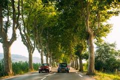 La guida di veicoli su una strada campestre ha allineato con gli alberi Luce solare luminosa Immagine Stock Libera da Diritti