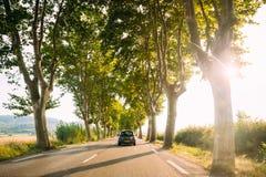 La guida di veicoli su una strada campestre ha allineato con gli alberi Luce solare luminosa Fotografia Stock Libera da Diritti