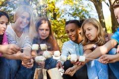 La guimauve heureuse de prise d'amis colle près du feu Images libres de droits