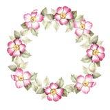 La guirlande avec des fleurs de sauvage s'est levée Illustration d'aquarelle Photo libre de droits