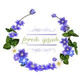 La guirlande des fleurs de scilla Calibre de carte de voeux de fleurs de ressort illustration libre de droits