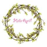 La guirnalda de la primavera a partir de las ramitas, del follaje joven, de mariposas y de la primavera florece Fotografía de archivo libre de regalías