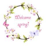La guirnalda de la primavera a partir de las ramitas, del follaje joven, de mariposas y de la primavera florece Imagen de archivo libre de regalías