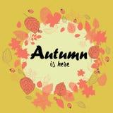 La guirnalda del otoño hecha del rojo se va con los escaramujos Ejemplo del vector en fondo amarillo El otoño está aquí Fotografía de archivo libre de regalías