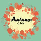 La guirnalda del otoño hecha del rojo se va con los escaramujos Ejemplo del vector en fondo verde El otoño está aquí Fotos de archivo libres de regalías