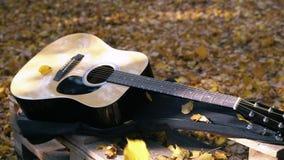 La guitarra miente en el bosque en las hojas amarillas Caída de las hojas del amarillo en la guitarra Bosque otoñal almacen de video