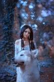 La hada mágica ensilla el lobo orgulloso del bosque y lo monta, depredador lleva a la princesa a su guarida, encuentro del duende imagen de archivo libre de regalías