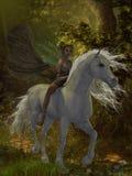 La hada monta unicornio Imagenes de archivo