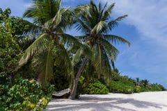 La hamaca Fotos de archivo libres de regalías