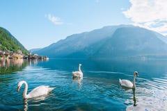 La Haute-Autriche Hallstatt Images libres de droits